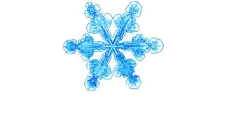 Snowflake11_2.png