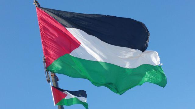 Palestine_flag_11.jpg
